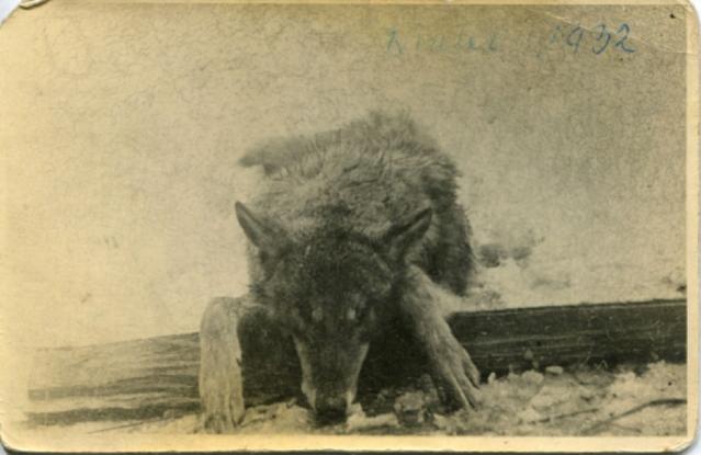 hiver 1932