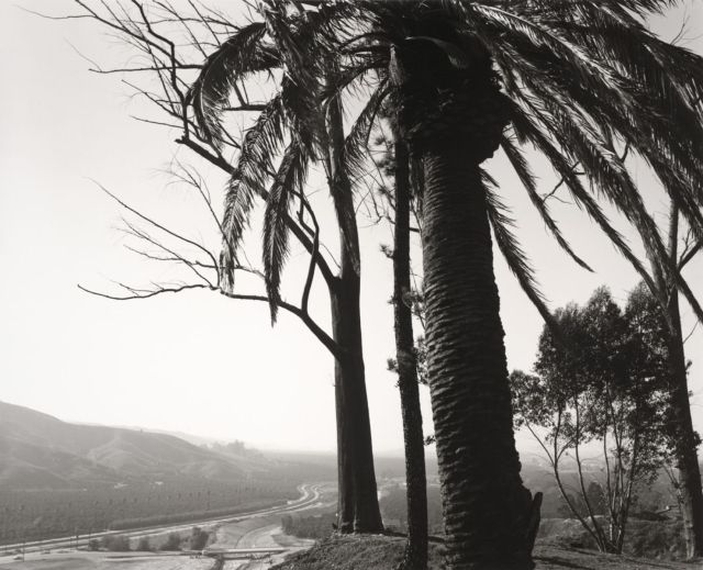 Edge of San Timoteo Canyon, Redlands, Californie 1978 Photo de Robert Adams.jpeg