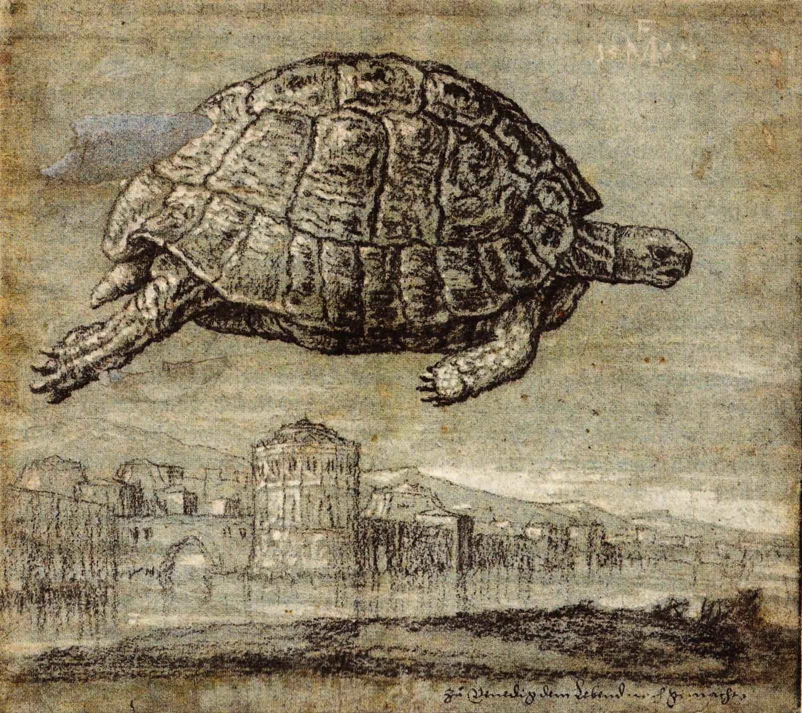Melchior_Lorck _ Tortue_au_dessus_de_la _lagune _vénitienne-1555