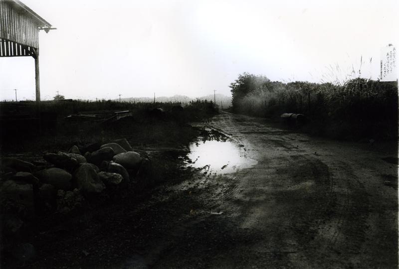 Daido Moriyama, Tokyo- suite d'un récit - Autum Trip (Omaezaki), 1984